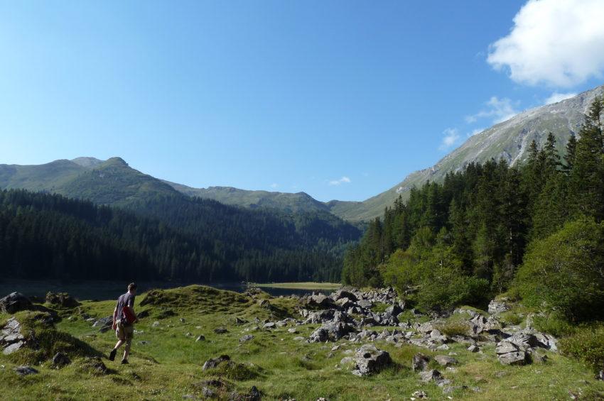Wiesen und Lichtungen am Obernberger See