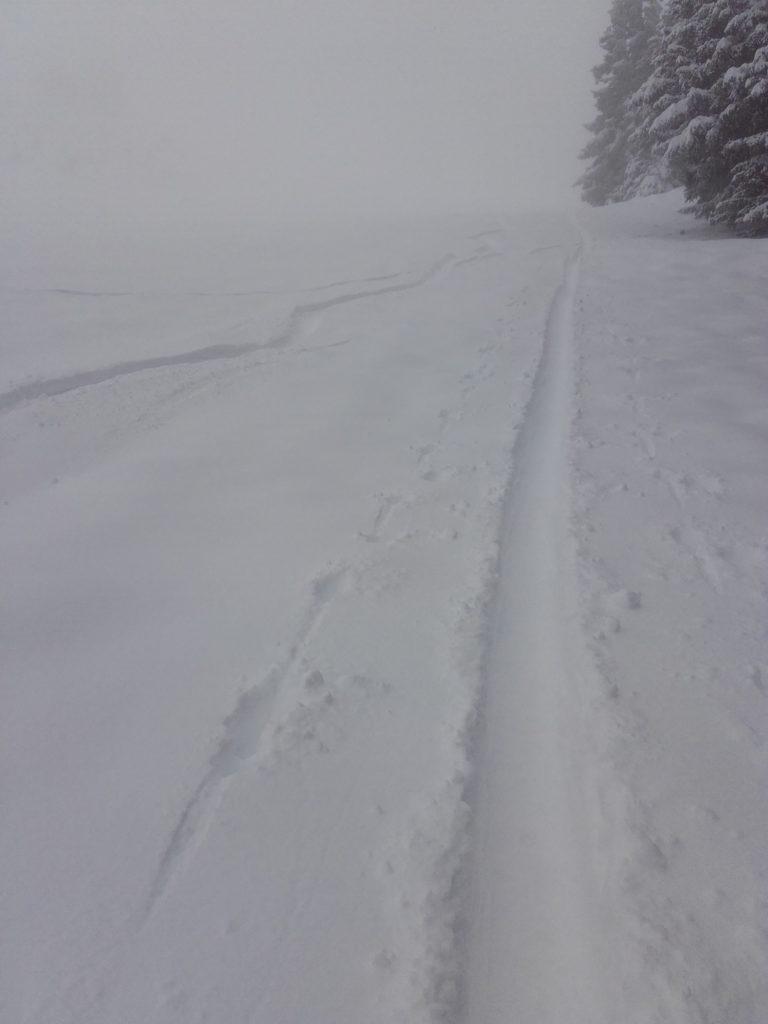 Abfahrt Skitour im Tiefschnee Sattelberg Wipptal