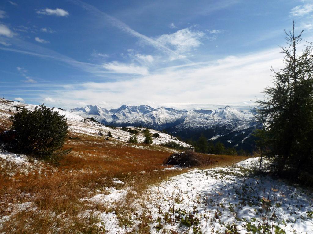 Über Wiesen und lichten Wald aufwärts, Obernberg