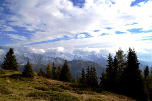 Schöner Ausblick auf die Zillertaler Alpen