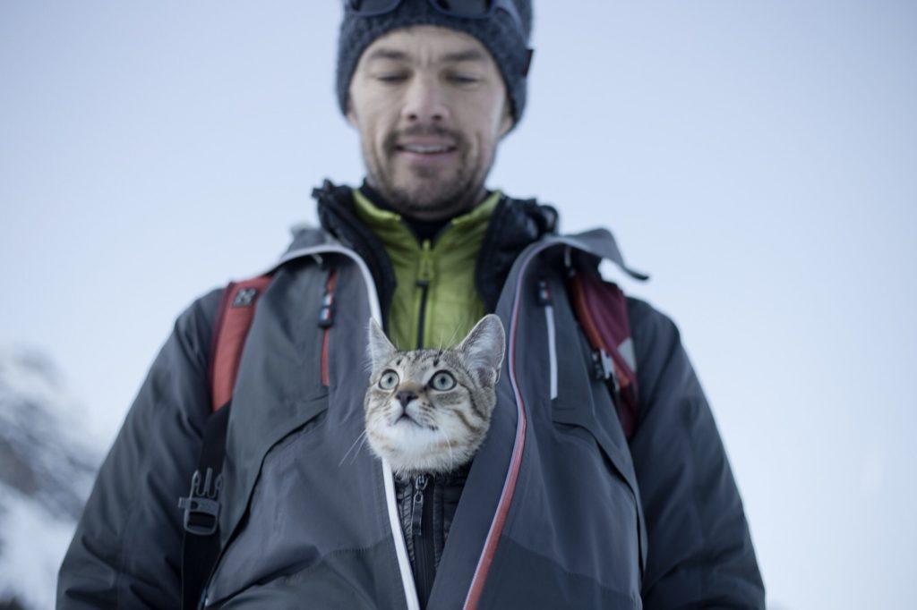 Winterwandern im Wipptal, mit Jungkater Björn