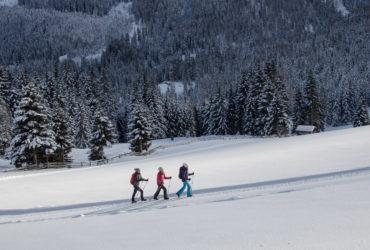 Winterlich Wandern