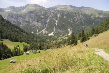 Almen im Obernbergtal