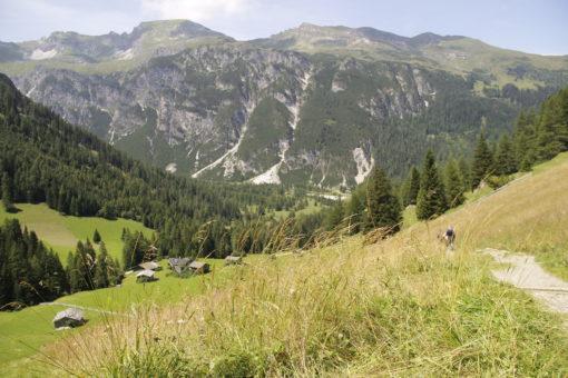 Blick auf Almen am Obernberger See