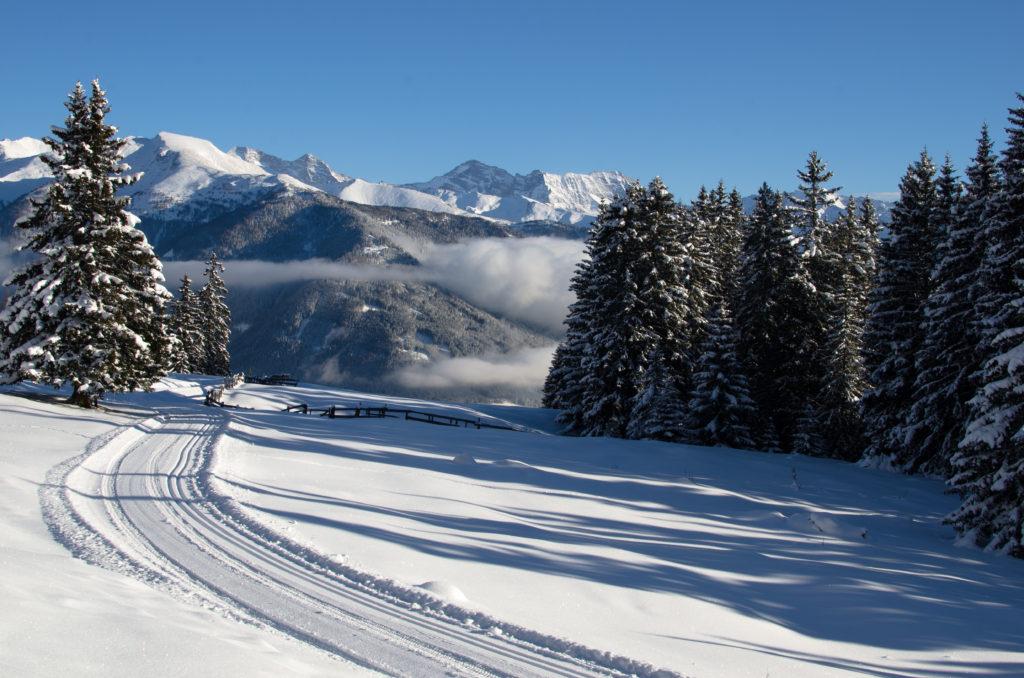 Loipe und Winterwanderweg Maria Waldrast
